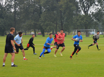 Chinese coaches training