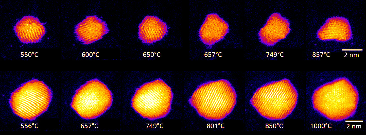 Shape changes in Au nanoclusters, indicating cluster surface melting at high tem